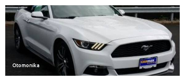 Ford Mustangs For Sale Near Me